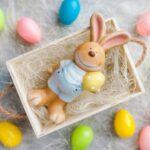 coniglio pasquale nella scatolina